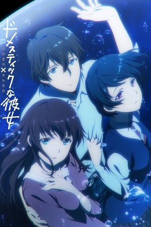 Domestic Girlfriend