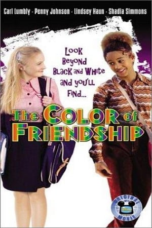 The Color of Friendship poszter