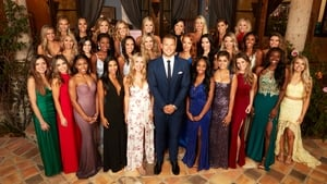 The Bachelor kép