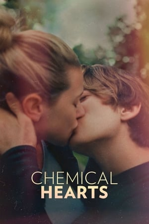 Chemical Hearts poszter